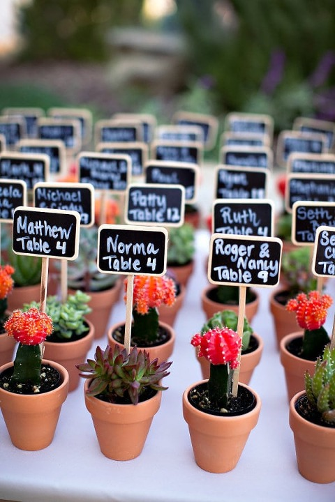 Ashleigh Taylor Photography l Charm Sity Wed l Potted Plant Seating Assignment