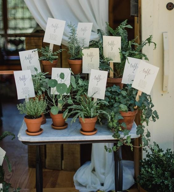 Katie Slater Photography l Charm City Wed l Potted Plant Table Assignment