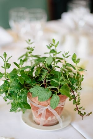 Lisa Dawn Photography l Charm City Wed l Potted Mint Favor